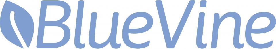 BlueVine Business Loans Online